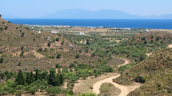 Ride down from the chapel accross an olive grove