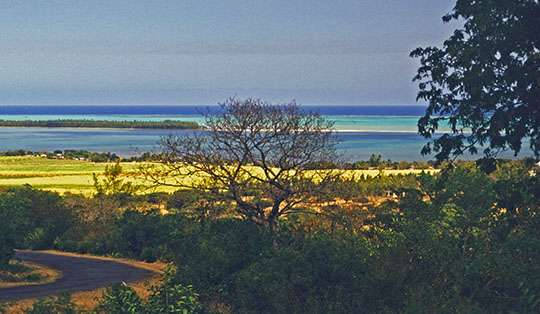 With the morning light, the lagoon around l'Île aux Bénitiers and its colors offer quite a different experience